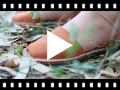 Video from Sandales Avarcas Nubuck