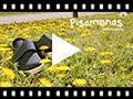 Video from Chaussures Blucher Avec Velcro et Semelle D'espadrille